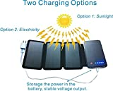 Zebora Powerful Portable Solar Charger Equipped with Solar Panels & 10,000 mAh Dual USB Ports Power Bank for Mobile Devices, Pads & More Other USB-Charged Devices (4 Pannel)