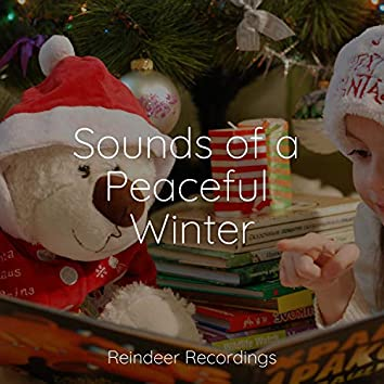 Sounds of a Peaceful Winter