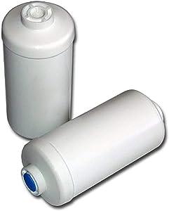 Berkey PF-2 Fluoride/Arsenic Replacement Filters, 4-Pack…