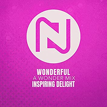 Wonderful (A Wonder Mix)