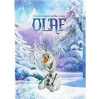 ディズニー アナと雪の女王 クリアファイル (5ポケット) オラフ S2157535