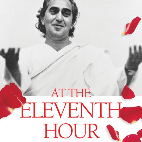 At the Eleventh Hour audiobook cover art