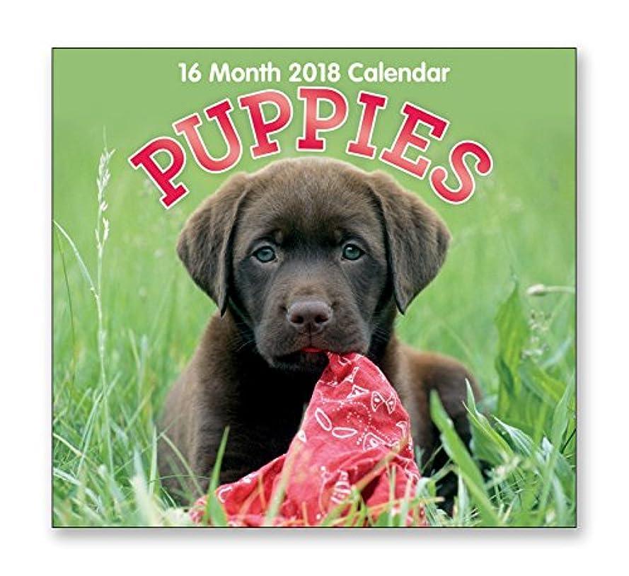 蓄積するナサニエル区彫る16?Month Wall Calendar 2018各月表示フルカラー写真。2017?–?2018年計画カレンダー