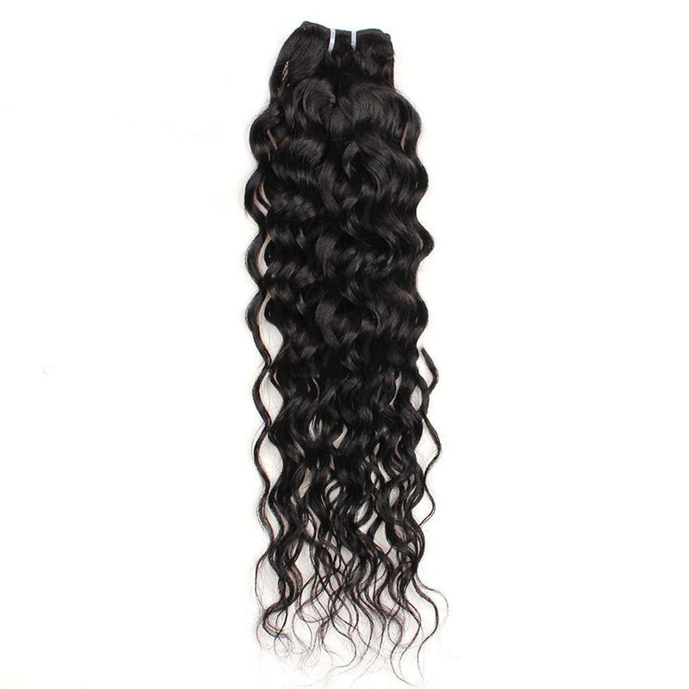 パノラマハードリング固執YESONEEP 10インチ-26インチブラジルリアル人間の髪の毛7Aウォーターウェーブヘアエクステンションナチュラルカラー100g /バンドル合成ヘアレースかつらロールプレイングかつら長くて短い女性自然 (色 : 黒, サイズ : 26 inch)