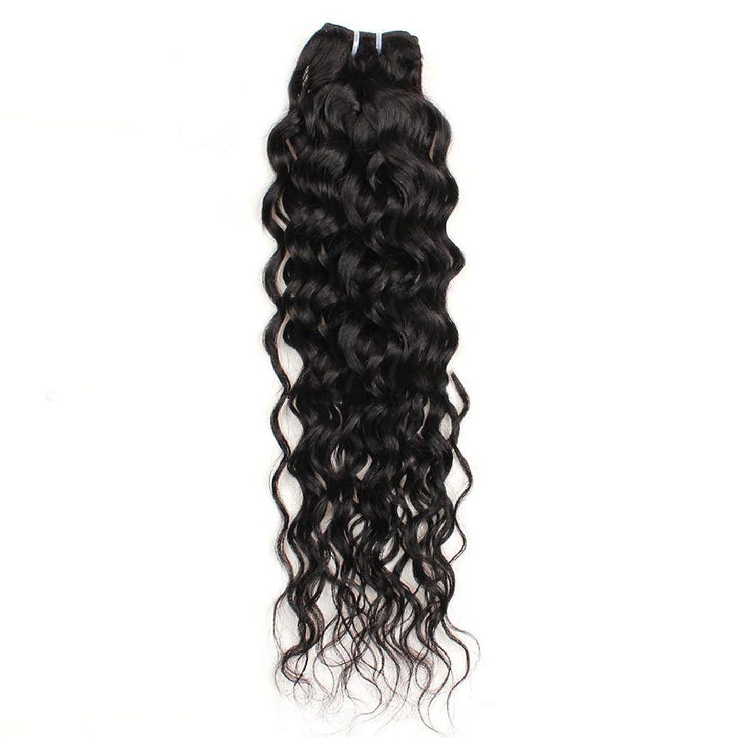 熟考する糞間違えたBOBIDYEE 10インチ-26インチブラジルリアル人間の髪の毛7Aウォーターウェーブヘアエクステンションナチュラルカラー100g /バンドル合成ヘアレースかつらロールプレイングかつら長くて短い女性自然 (色 : 黒, サイズ : 22 inch)