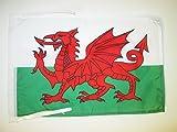 AZ FLAG Flagge Wales 45x30cm mit Kordel - WALISISCHE Fahne 30 x 45 cm - flaggen Top Qualität