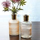 HOMMAX Vase, 2er Set Glas Vasen mit Kupferring, Handgefertigte Kleine Blumenvase in Beige, H20 cm D10 cm, dekorative Vasen für Wohnzimmer,Tisch, Zuhause, Büro, Hochzeit, oder als Geschenk