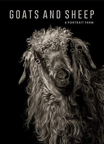 Goats and Sheep. A Portrait Farm