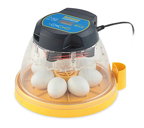FINCA CASAREJO Incubadora 7 Huevos...
