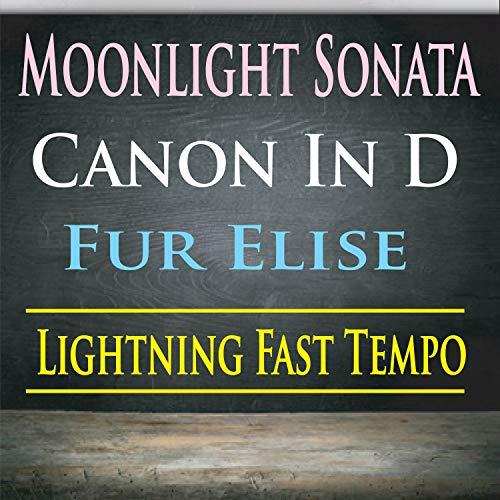 Moonlight Sonata, Canon In D, Fur Elise (Lightning Fast Tempo)