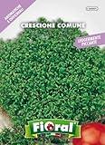 Sementi di piante aromatiche e officinali in bustina ad uso amatoriale (CRESCIONE COMUNE)