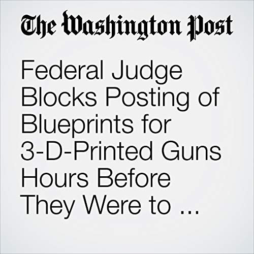 Federal Judge Blocks Posting of Blueprints for 3-D-Printed Guns Hours Before They Were to Be Published copertina
