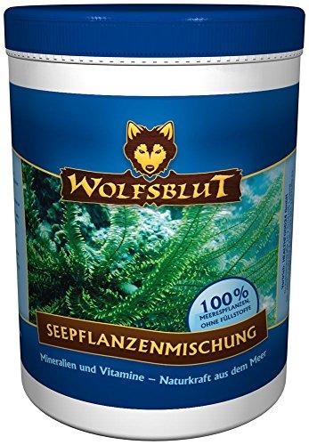 Wolfsblut | Seepflanzenmischung | 500 g | Seepflanzen | Futterzusatz | Hundefutter | Ergänzungsmittel