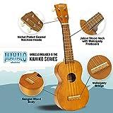 Immagine 1 mahalo learn 2 play ukulele