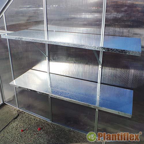Wandregal für Gewächshaus Duo Hängeregal 120x30 cm für Treibhaus Pflanzenhaus Regal Ablage (4 Stück - 120x30)