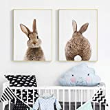 Rabbit Tail Wall Art Woodland Animal Poster Canvas Painting Nursery Print Niños Imagen Nordic Kids Baby Room Decor-50x70cmx2 (sin Marco)