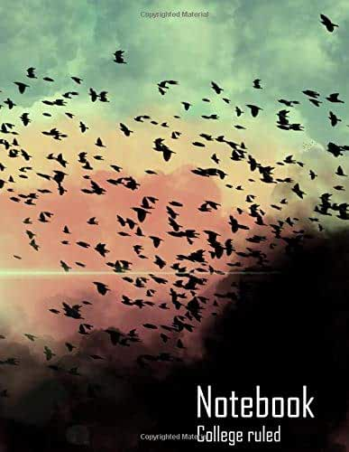 """Notebook : Birds in the clouds (College Ruled, Matte Softcover, 100 White Lined Pages, 8.5"""" x 11"""" (21.59 x 27.94 cm))"""