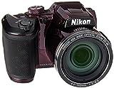 Nikon B500 16 MP Point & Shoot Digital Camera, Plum