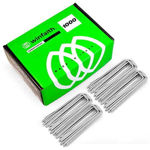 Winfaith - Piquetas de paja de acero galvanizadas en caliente (1000 unidades, 100 x 30 x D3)
