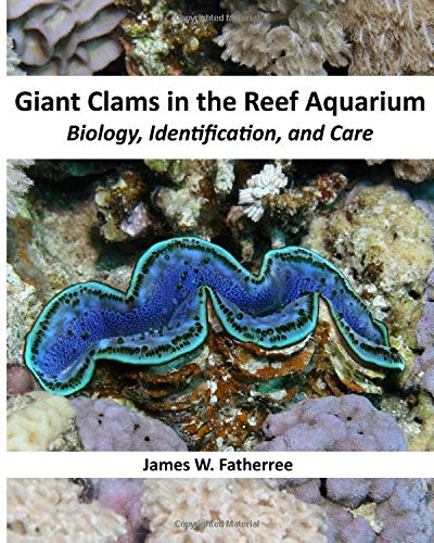 Giant Clams in the Reef Aquarium: Biology, Identification, and Care