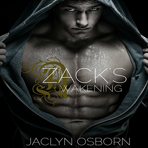 Zack's Awakening cover art