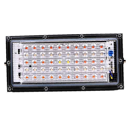 MICHAELA BLAKE Betriebslicht Full Spectrum 100W 220V Lampen mit Rot, Blau Full Spectrum für Gewächshäuser hydroponischen Gemüse Rot Blau Weiß