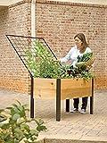 Elevated Cedar Planter Box and Space-Maker Pivoting Trellis Set, 2 x 4