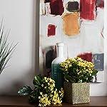 vickerman-kalanchoe-bush-artificial-flowers-1725-yellow