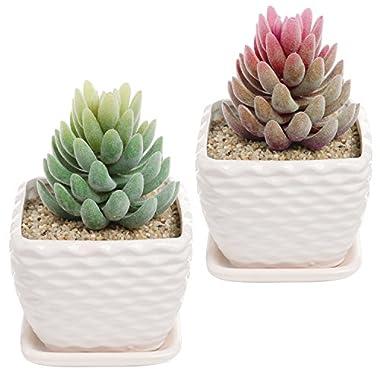 4.3 Inch Set of 2 off-White Wavy Coil Design Ceramic Succulent Planter Flower Pot w/ Drainage Plate
