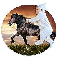 エリアラグ軽量 黒い馬の牧草地 フロアマットソフトカーペット直径31.5インチホームリビングダイニングルームベッドルーム