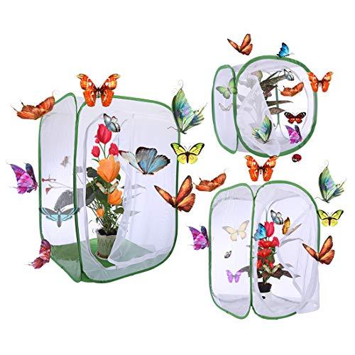 ZUJI 3er Set Schmetterlinge Züchten Schmetterlingsfarm Schmetterlingsgarten Schmetterlinge Häuser für Schmetterlingszucht