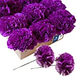 Royal Imports Artificial Carnations, Silk Faux Flowers, for Funeral Arrangements, Wedding Bouquets, Cemetery Wreaths, DIY Crafts - 100 Single 5' Stems - Purple