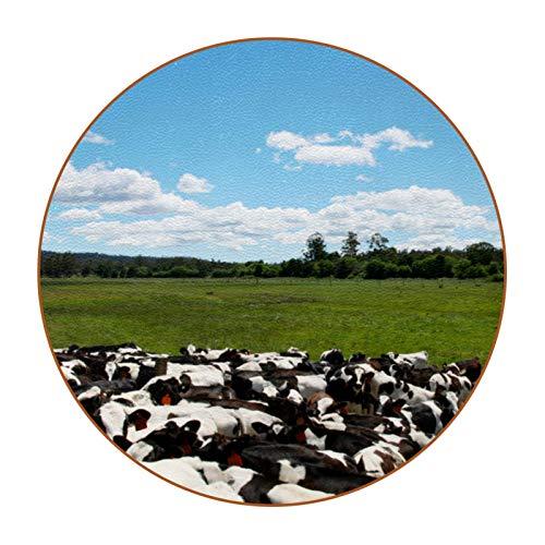 6 posavasos duraderos con base de piel de microfibra para tazas de vidrio, taza de café, vacas en un prado