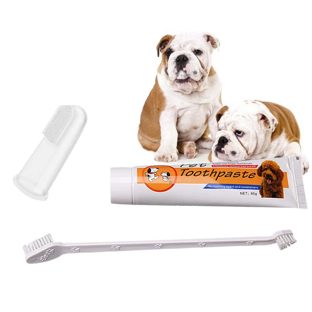 Cuidado Dental para Mascotas Kit De Cuidado Bucal Perro Gato ...