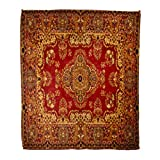 Golee Throw Blanket Red Oriental Persian Carpet Pattern Old Royal Ethnic Traditional Border 60x80 Inches Warm Fuzzy Soft Blanket for Bed Sofa