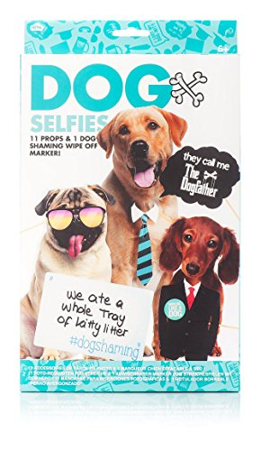 Celebration Nation NP21363 Hond Kit Selfie Photo Props, Papier
