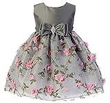 3D Embroidery Baby Flower Girl Dress Event Dress Winter Dress Cute...