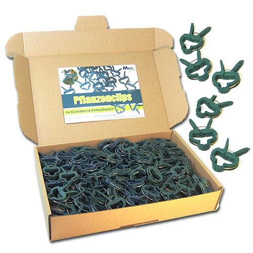 MGS SHOP Pflanzenclips 100 Stück stabile Clips Pflanzenklammern (kleine Clips)