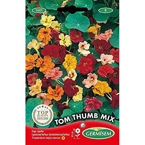 Germisem Tom Thumb Mix Semillas de Nasturtium 5 g