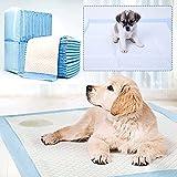 Empapadores Perro Super-absorbentes, Almohadillas para la incontinencia(M 40X50CM 50PCS, Blanco)