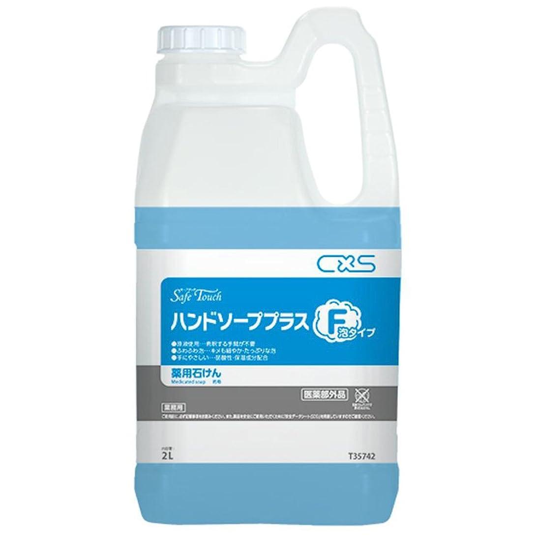 帳面忘れっぽい活性化するシーバイエス(C×S) 殺菌?消毒用手洗い石けん セーフタッチハンドソーププラスF 2L