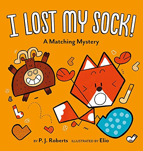 I Lost My Sock!: A Matching Mystery