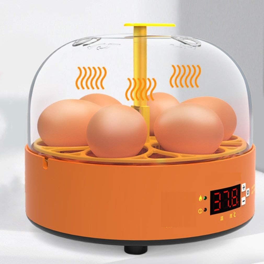 Egg Incubator Ranking TOP1 Outlet SALE 6 Slot Incubators Eggs Temperatu for with Hatching