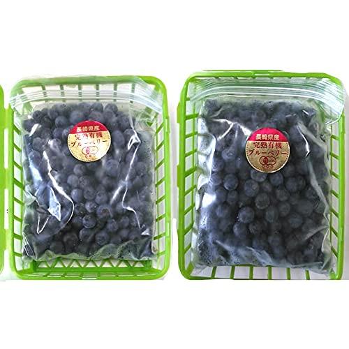 有機ブルーベリー 1kg(500g×2袋)冷凍ブルーベリー 無農薬 有機栽培 自然農法 長崎県産