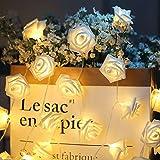 Guirnalda de luces LED - ELINKUME 2,5M/8,2 pies 20 LED rosas luces de hadas Con pilas blanco cálido decoración de flores románticas para San Valentín, Navidad, bodas, fiestas