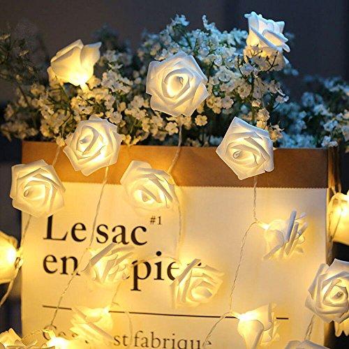 Guirnalda de luces LED - ELINKUME 2,5M/8,2 pies 20 LED rosas luces de