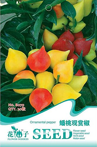 Rare Seeds Flat Peach 'ornemental Pepper Bonsai, emballage d'origine, 20 graines / Pack, Intéressant Légumes, plantes B079