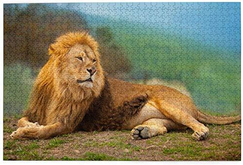 León macho descansando tumbado en la montaña 1000 piezas, rompecabezas para adultos y niños (lateral)