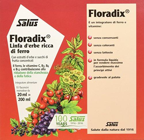 Salus Floradix Ferro E Vitamine - Integratore Alimentare Con Estratti Vegetali - 200 Ml