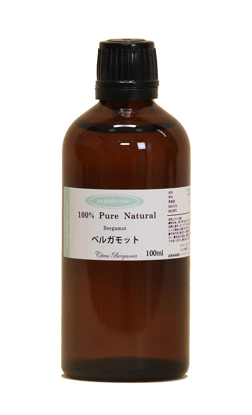 言い訳欠伸アダルトベルガモット 100ml 100%天然アロマエッセンシャルオイル(精油)